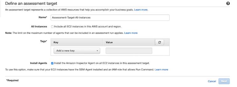 AWS Made Easy | AWS Inspector assessment tag option.